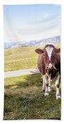 Swiss Cow Beach Towel