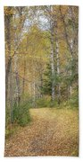 The Golden Path Beach Towel by Susan Rissi Tregoning