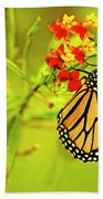 The Monarch Butterfly Beach Towel