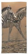 The Race - Zebras Beach Towel by Alan M Hunt