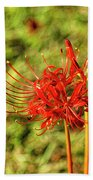 The Spider Lily Beach Towel