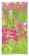The World Laughs In Flowers - Primula Beach Towel