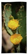 The Yellow Rose Of Arizona Beach Towel by Rick Furmanek