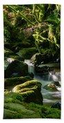 Torc Waterfalls Two Beach Towel