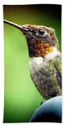 Totem Animal Book Hummingbird Beach Towel