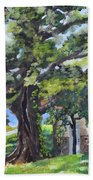 Tree At Cartecay Beach Towel