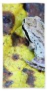 Tree Frog On Yellow Leaf Beach Towel