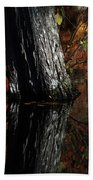 Tree Reflects In The Pond Beach Towel