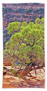 Trees Plateau Valley Colorado National Monument 2871 Beach Towel