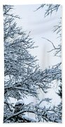 Trees With Snow Beach Sheet