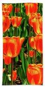 Tulips 2019d Beach Sheet