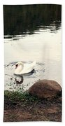 Twilight Swan Beach Towel