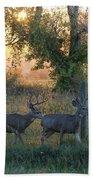 Two Deer Sunset Beach Towel
