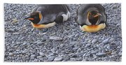 Two King Penguins By Alan M Hunt Beach Towel
