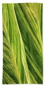 Variegated Shell Ginger Beach Towel