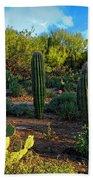 Vislumbre De Sonoran H1833 Beach Towel by Mark Myhaver