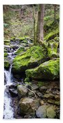 Vivid Green In The Black Forest Beach Sheet