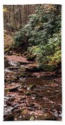 Washington Creek Beach Towel