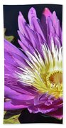 Water Lily On The Pond Beach Towel