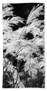 Weed Grass Black And White Beach Towel