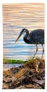 Wheeler Oregon - Great Blue Heron Beach Towel