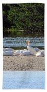 White Pelican Rest Beach Towel