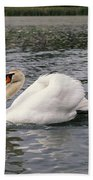 White Swan On Lake Beach Towel