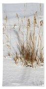 Whitehorse Winter Landscape Beach Sheet