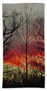 Winter Evening Beach Towel