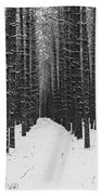 Winter Forest In Black And White Beach Sheet