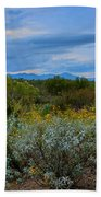 Winter In The Valley  H1933 Beach Towel by Mark Myhaver