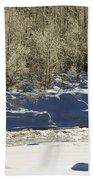 Winter Stream Near Hope On The Kenai Peninsula Alaska Beach Sheet