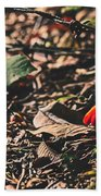 Witch's Hat Mushrooms Beach Towel
