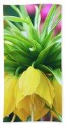 Yellow Tulip Close Up Beach Sheet