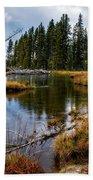 Yellowstone National Park Beach Towel by Scott Read