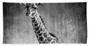 Young Giraffe Black And White Beach Sheet