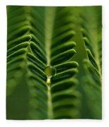 A Green Drop Fleece Blanket