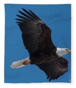 Bald Eagle In Flight 6 Fleece Blanket