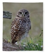 Burrowing Owls - Watching You 3 Fleece Blanket