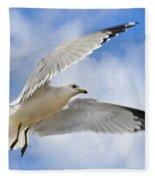 Jekyll Island Seagull Fleece Blanket