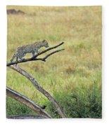 Leopard Cub In Serengeti Fleece Blanket