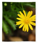 Marguerite Yellow Daisy Fleece Blanket