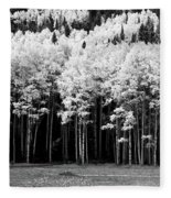 New Mexico Aspens Fleece Blanket