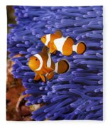 Ocellaris Clownfish Fleece Blanket
