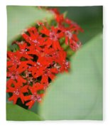 Red Butterfly Buds By Jammer Fleece Blanket