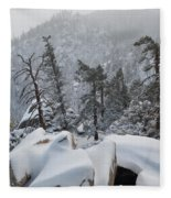 San Jacinto Winter Wilderness Portrait Fleece Blanket