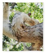 Sycamore Tree's Twisted Trunk Fleece Blanket