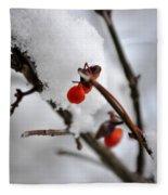 001 Frozen Berries Fleece Blanket