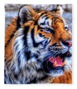 001 Siberian Tiger  Fleece Blanket