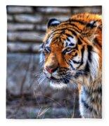 0010 Siberian Tiger Fleece Blanket